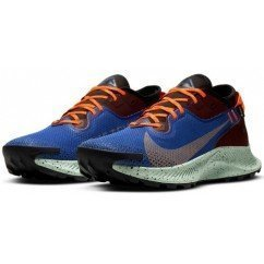 cu2016-600 Nike Air Zoom Pegasus Trail 2 gore tex